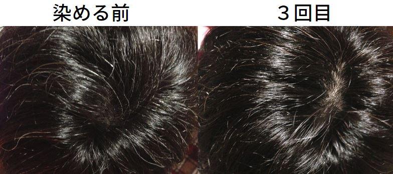 【美容師レビュー】ルプルプは染まるのか、染める前と3回目に染めた写真で染まり具合を検証してみます1