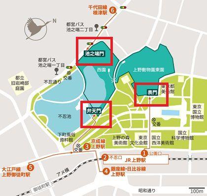 パンダの混雑状況や待ち時間、観覧方法を全て徹底解説、上野動物園の入場口は3つ