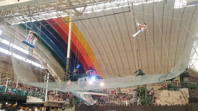 夏休み期間中たのしめるサーカスの写真5、空中ブランコ