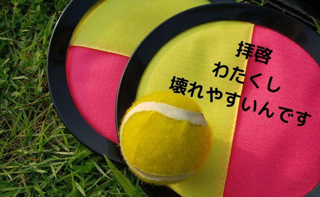 【簡単修理】マジックキャッチ(フライング)ボールが壊れたから直してみた!