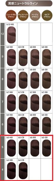 セルフの白髪染めで4トーン・5トーンで染めたい方のカラーチャート
