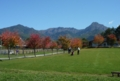 09.10.11八ヶ岳農場。左から硫黄岳、横岳、阿弥陀岳。(望遠)
