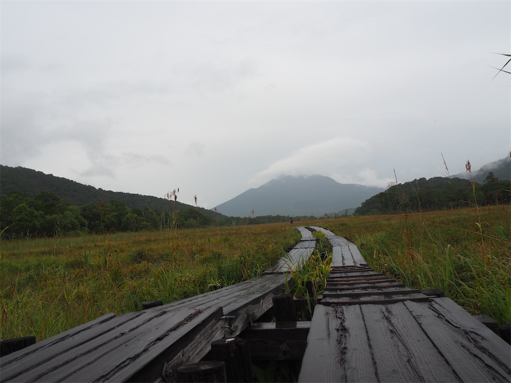 f:id:yumehituji331:20200916205846j:image