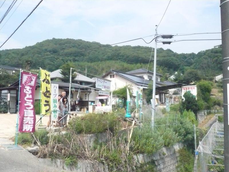 f:id:yumehyakusho:20120812160449j:image