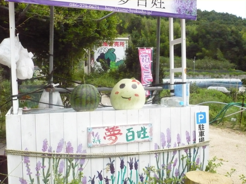 f:id:yumehyakusho:20130826090022j:image