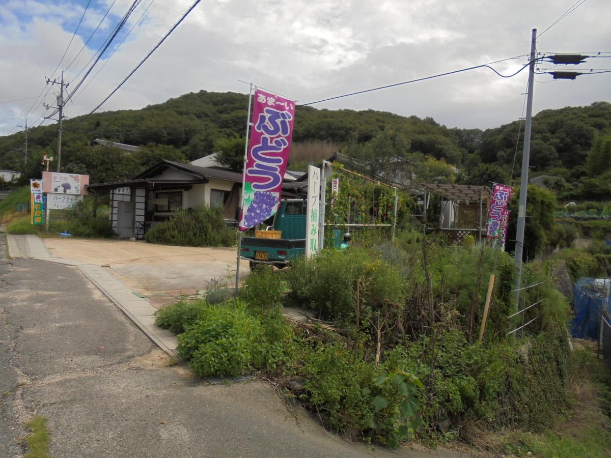 f:id:yumehyakusho:20190807103207j:plain