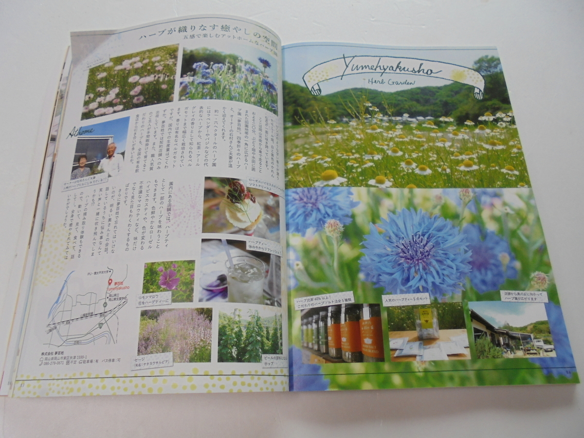 f:id:yumehyakusho:20200122154549j:plain