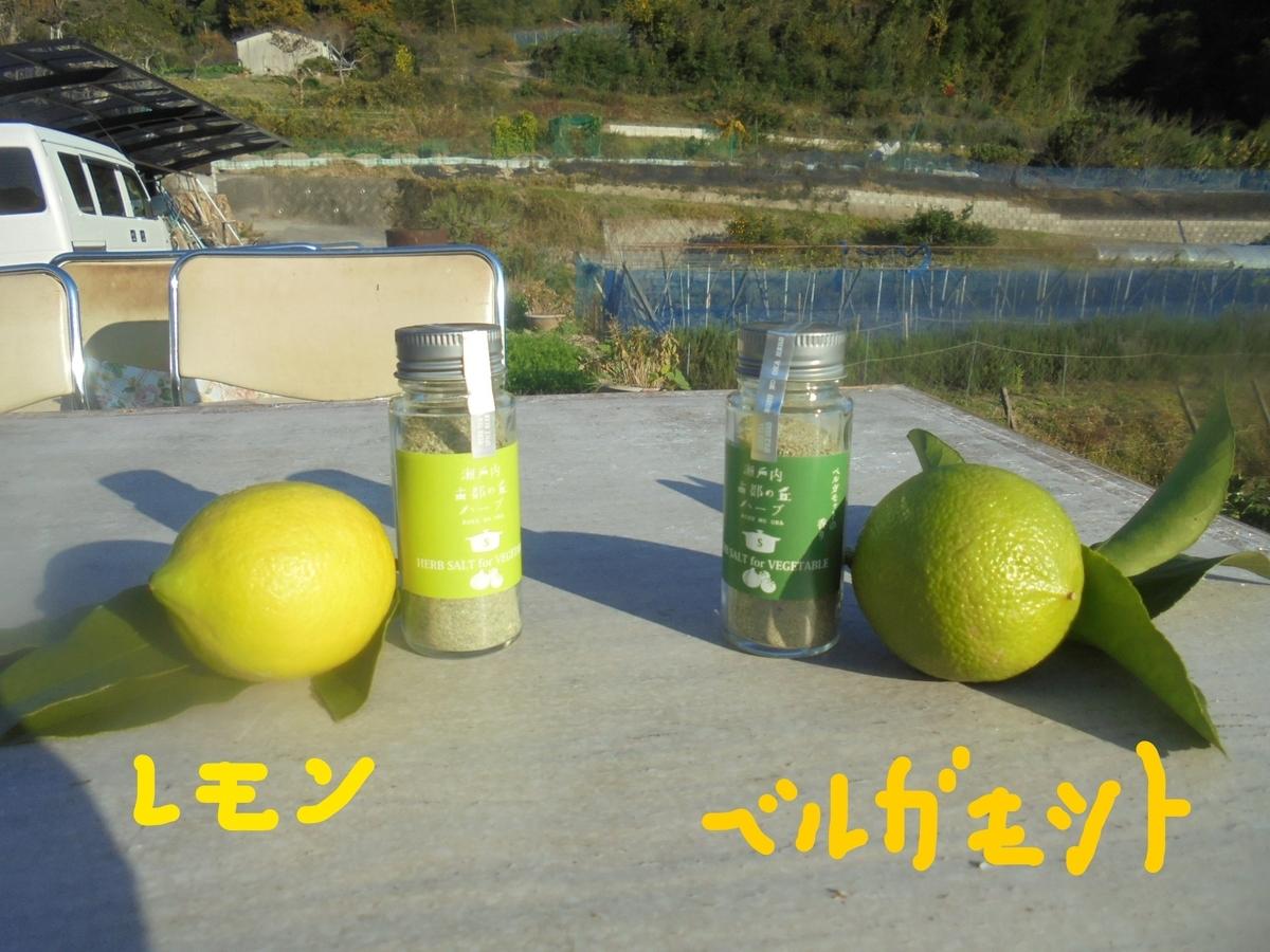 f:id:yumehyakusho:20201113203020j:plain