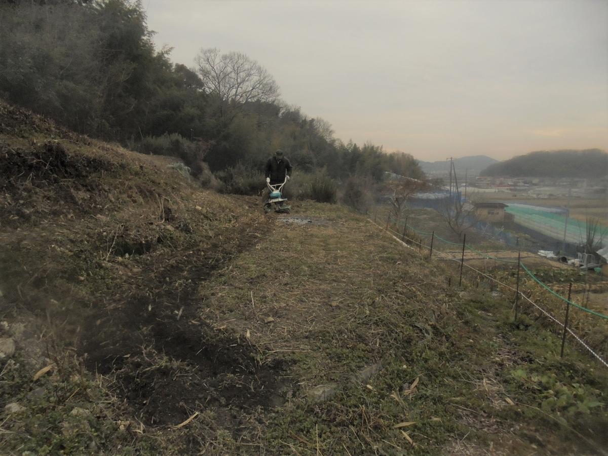 f:id:yumehyakusho:20210201152152j:plain