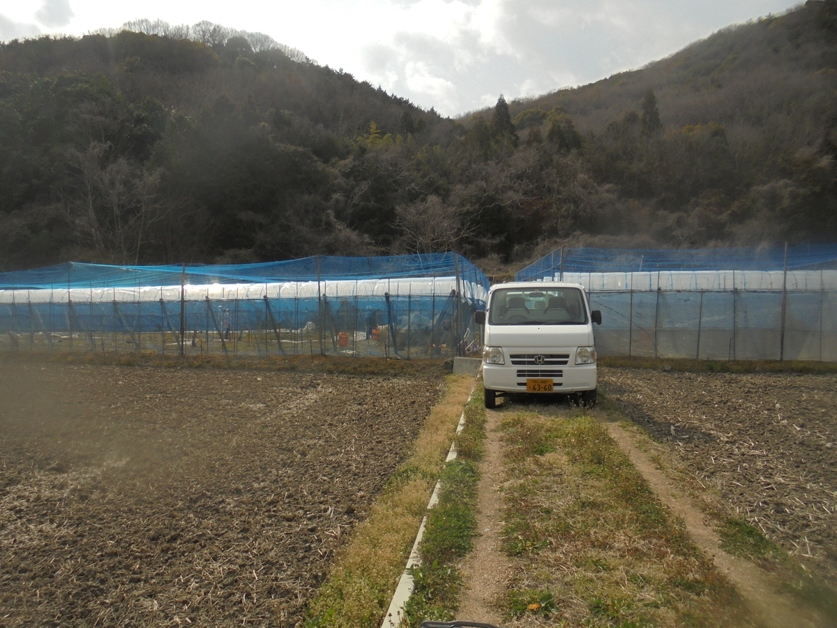 f:id:yumehyakusho:20210316194436j:plain