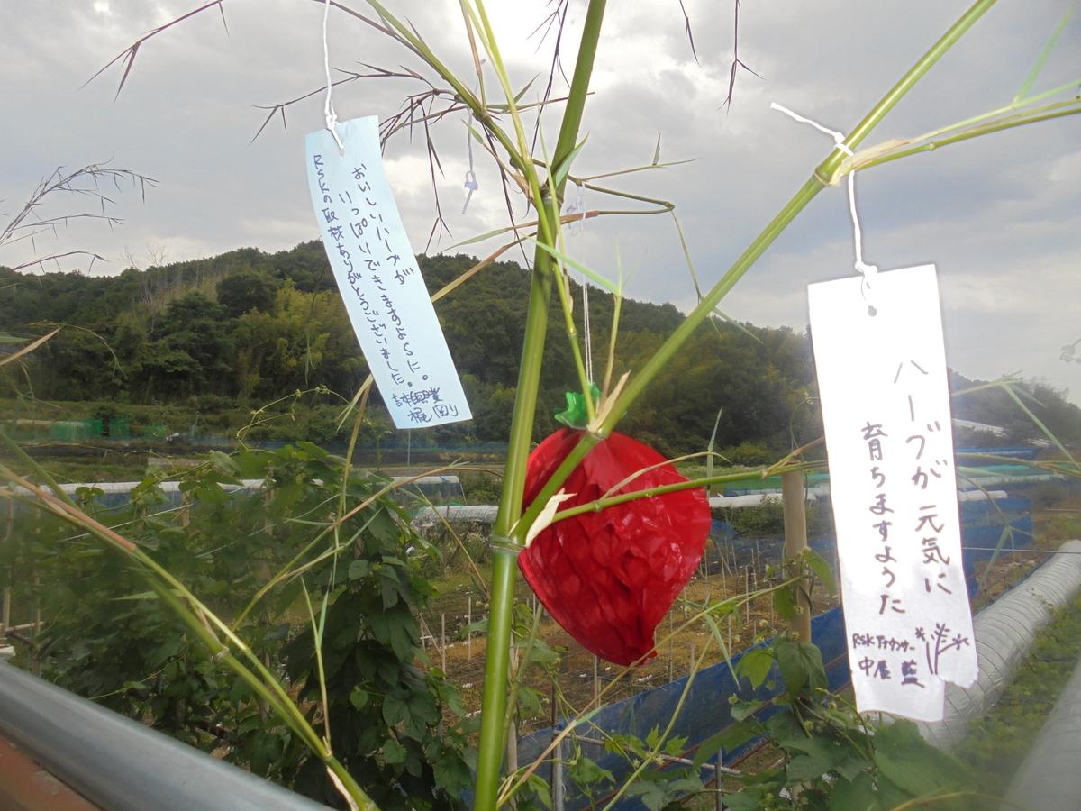 f:id:yumehyakusho:20210623192206j:plain