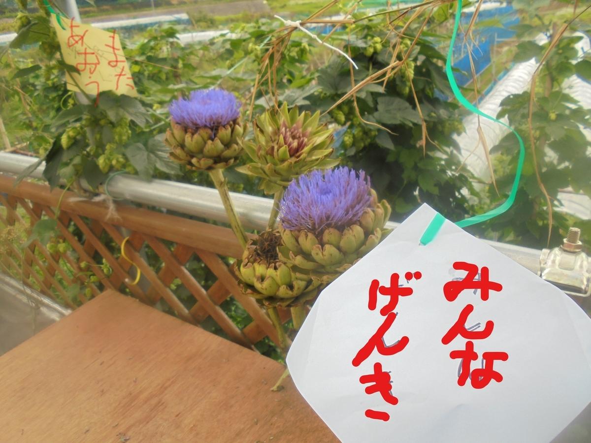 f:id:yumehyakusho:20210705100435j:plain