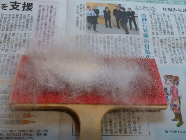 f:id:yumeitotumugi:20170530181317j:plain