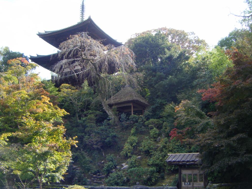 f:id:yumejitsugen1:20070101023141j:plain