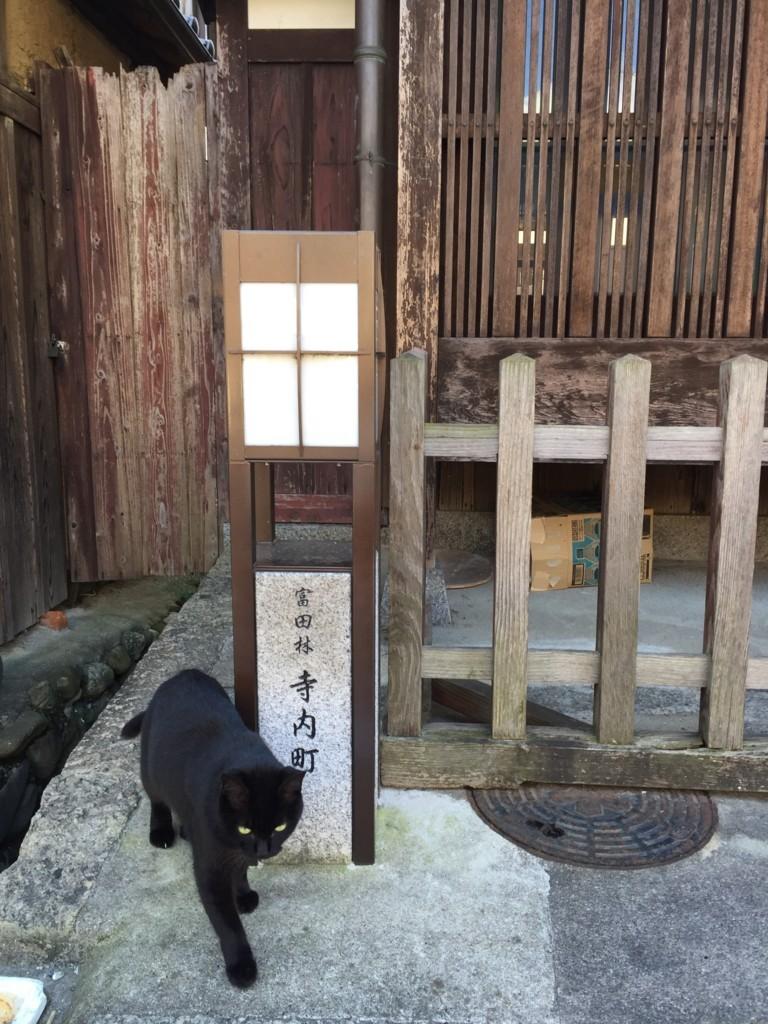 f:id:yumejitsugen1:20161109121906j:plain