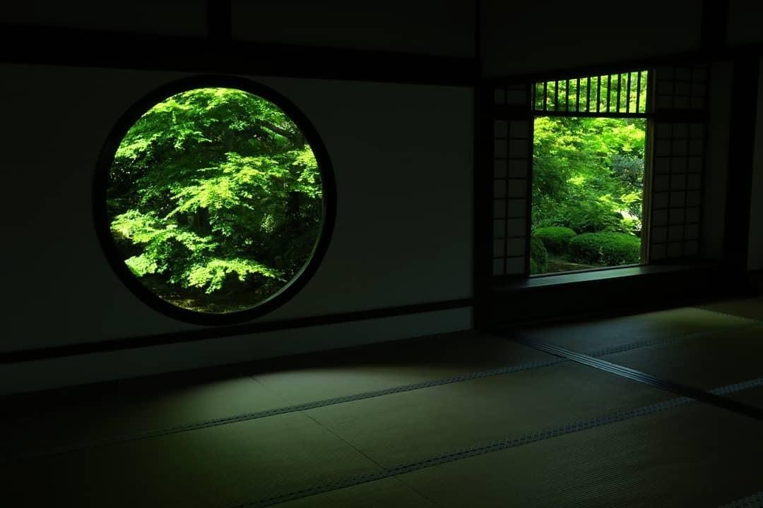 f:id:yumejitsugen1:20190615140451j:plain
