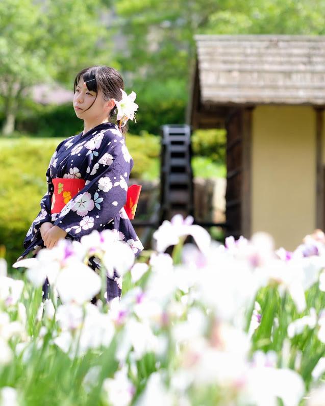f:id:yumejitsugen1:20190726192845j:plain