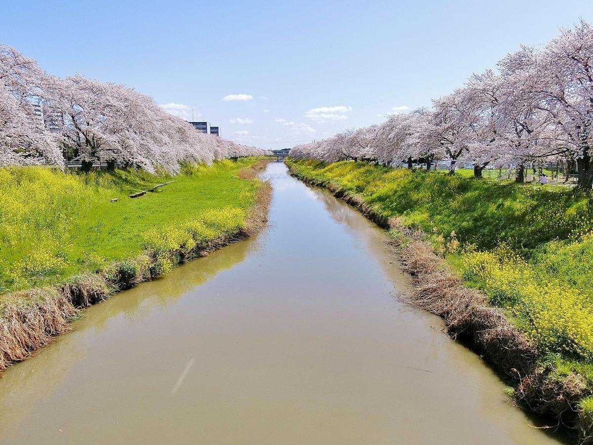f:id:yumekake-john-ngohope:20210401161823j:plain