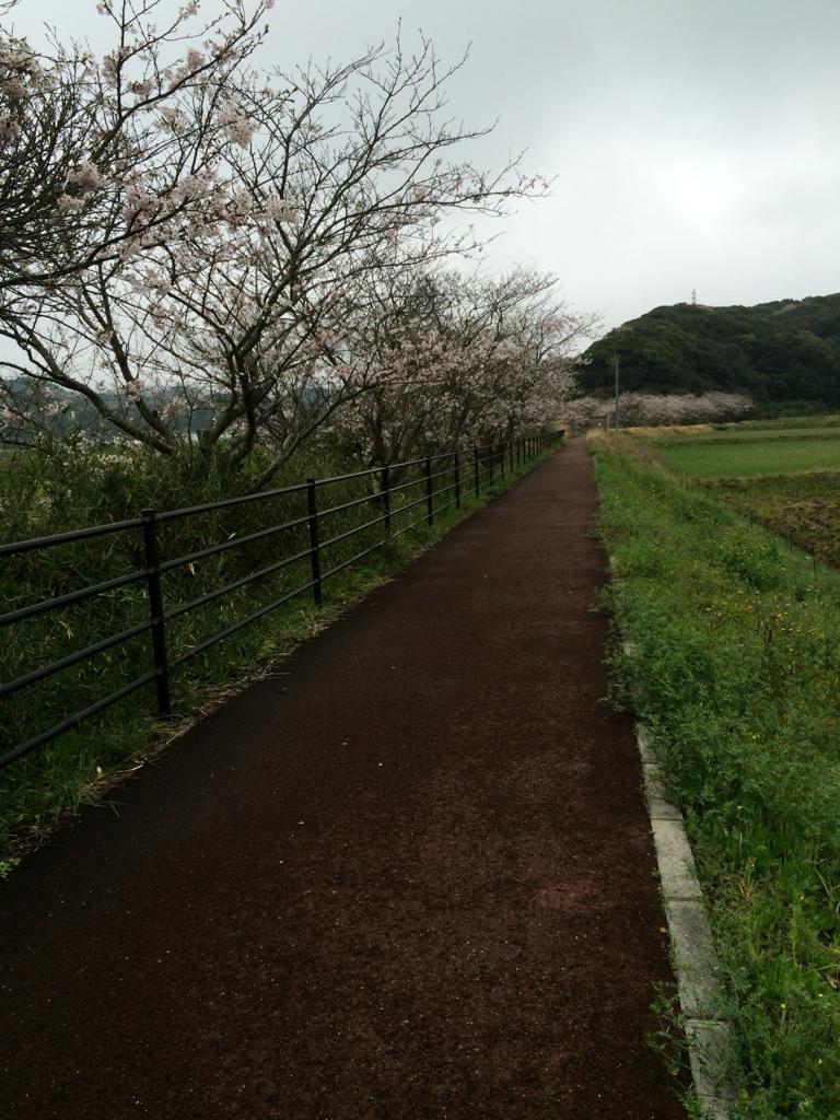 f:id:yumekirara362:20170408222832j:plain