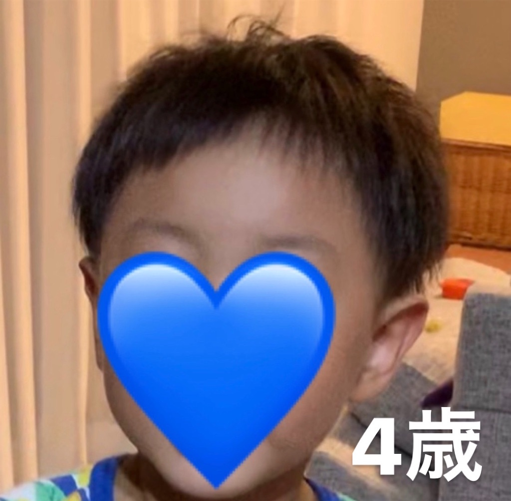 f:id:yumekuro789:20200827060210j:image
