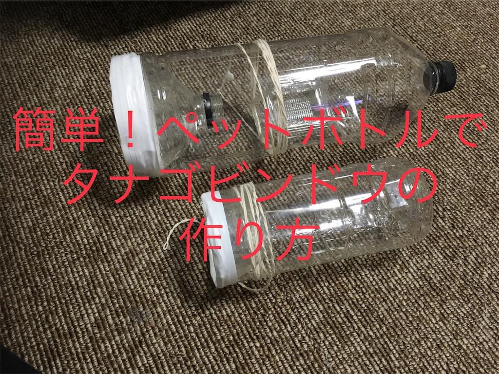 f:id:yumemiraitunagu:20190625024746j:image
