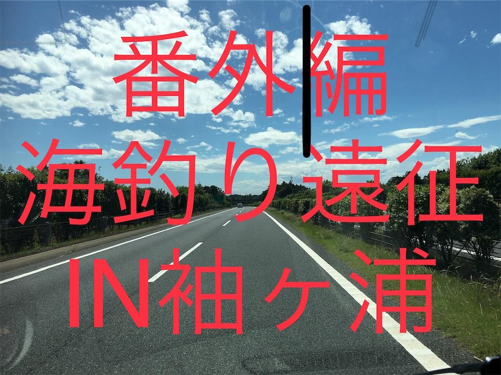 f:id:yumemiraitunagu:20190626215714j:plain