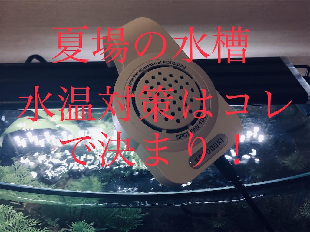 f:id:yumemiraitunagu:20190730030047j:image