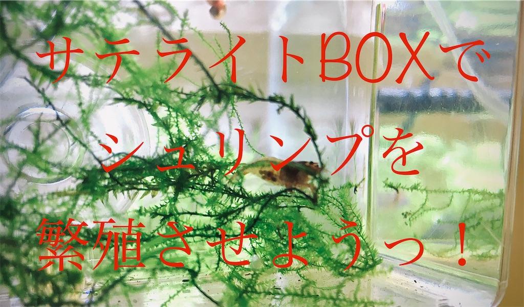 f:id:yumemiraitunagu:20191024180905j:image