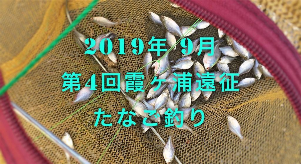 f:id:yumemiraitunagu:20191117035425j:plain