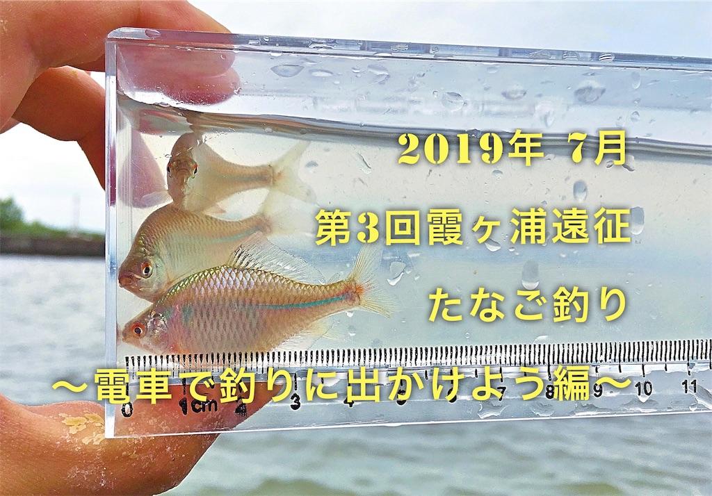 f:id:yumemiraitunagu:20191118040053j:plain