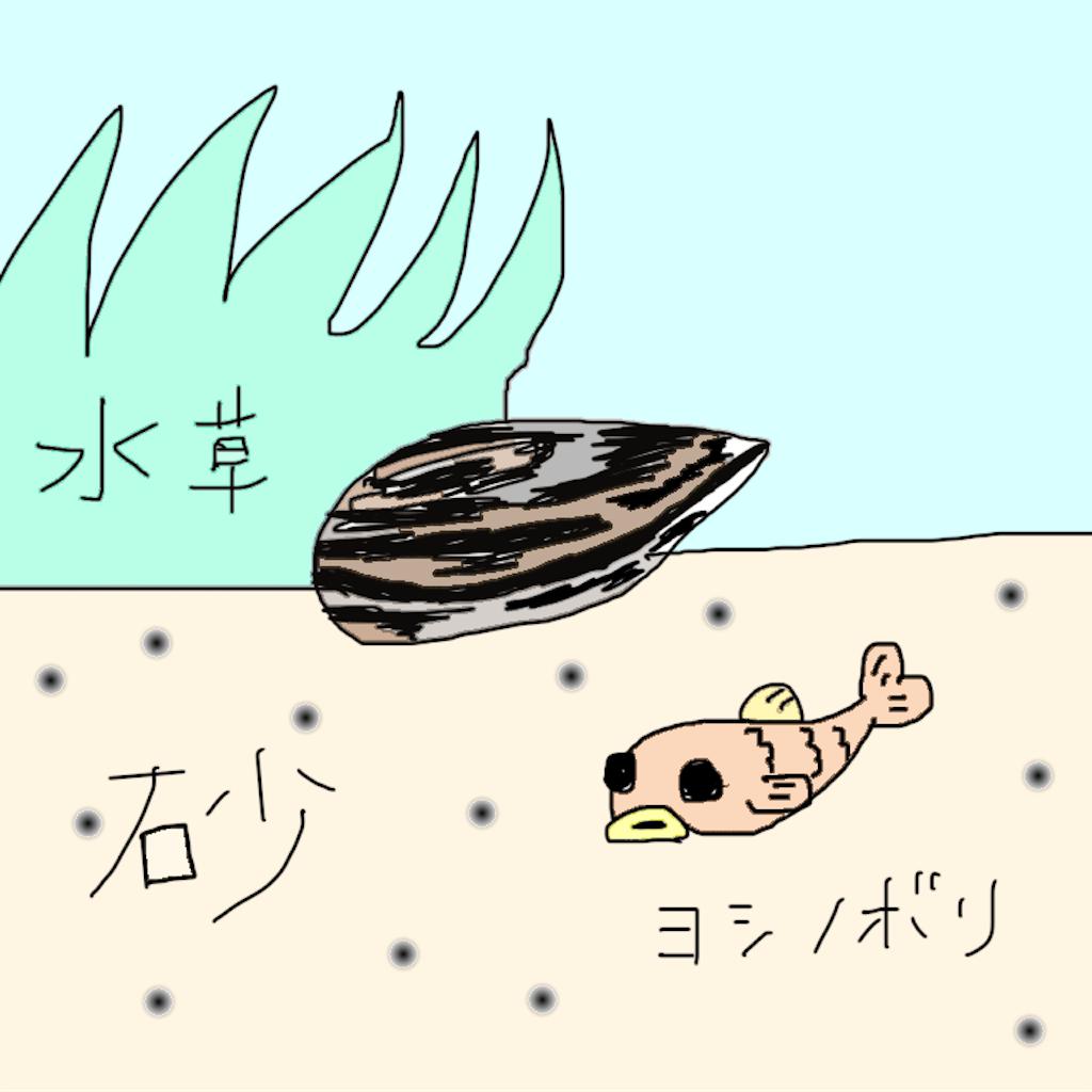 f:id:yumemiraitunagu:20191129193428p:plain