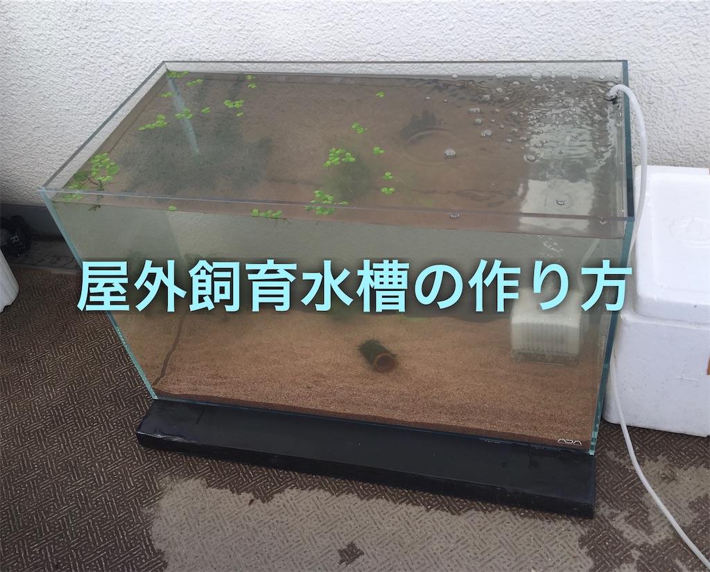 f:id:yumemiraitunagu:20191203154114j:plain