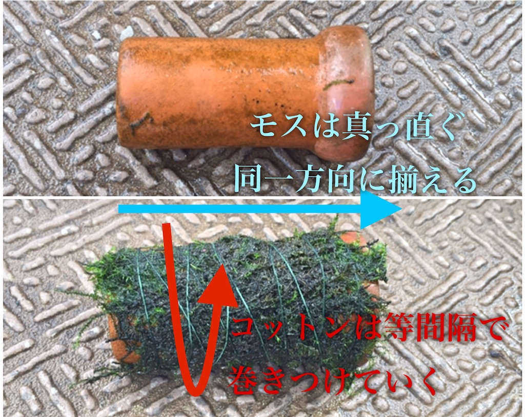 f:id:yumemiraitunagu:20191204152755j:image