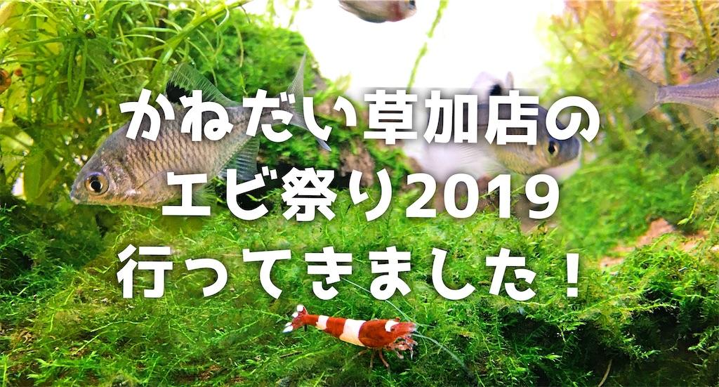 f:id:yumemiraitunagu:20191210215530j:plain