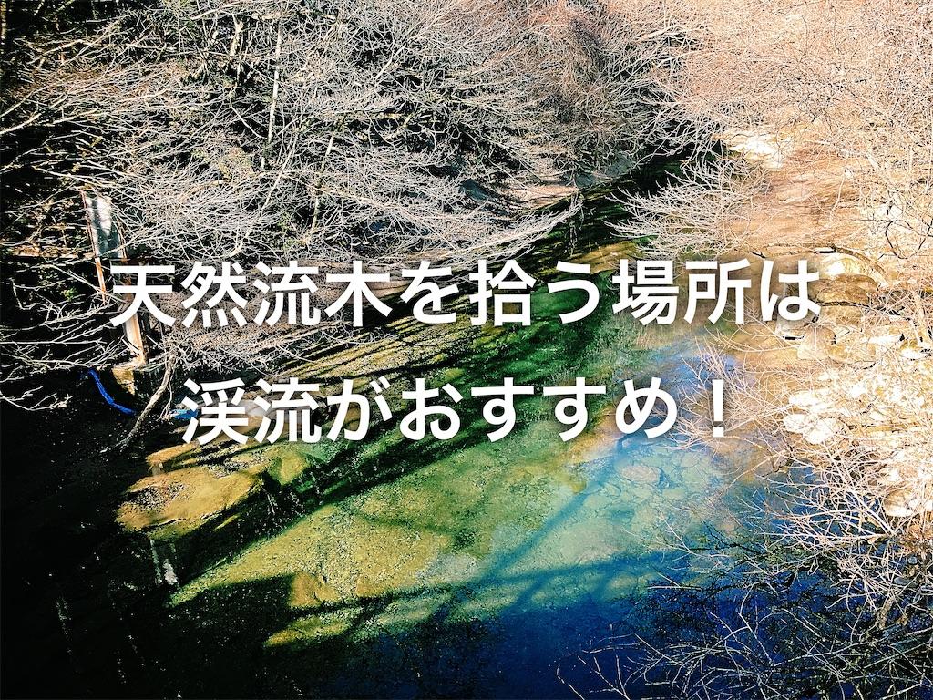 f:id:yumemiraitunagu:20200115043717j:plain