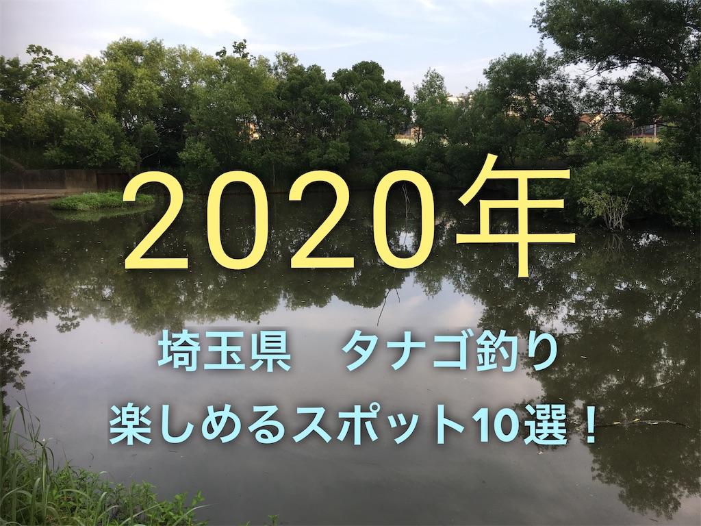 f:id:yumemiraitunagu:20200124141424j:plain