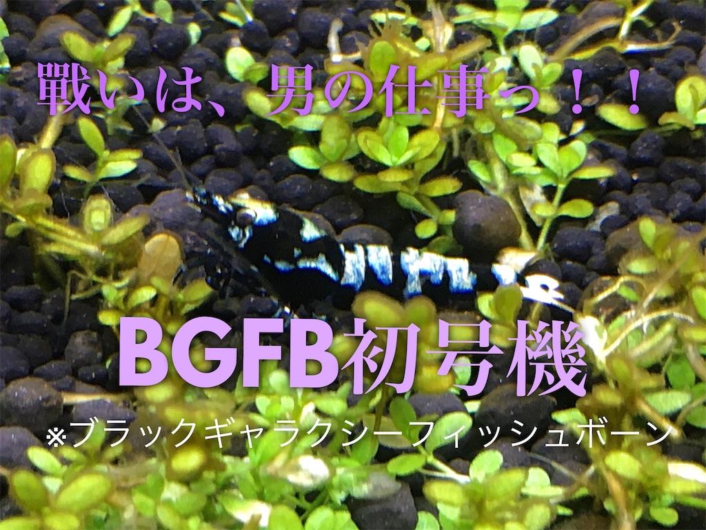 f:id:yumemiraitunagu:20200131194021j:plain