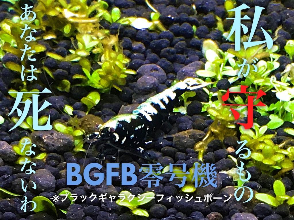 f:id:yumemiraitunagu:20200131194025j:plain