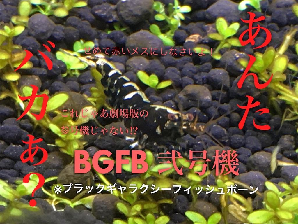 f:id:yumemiraitunagu:20200131194028j:plain