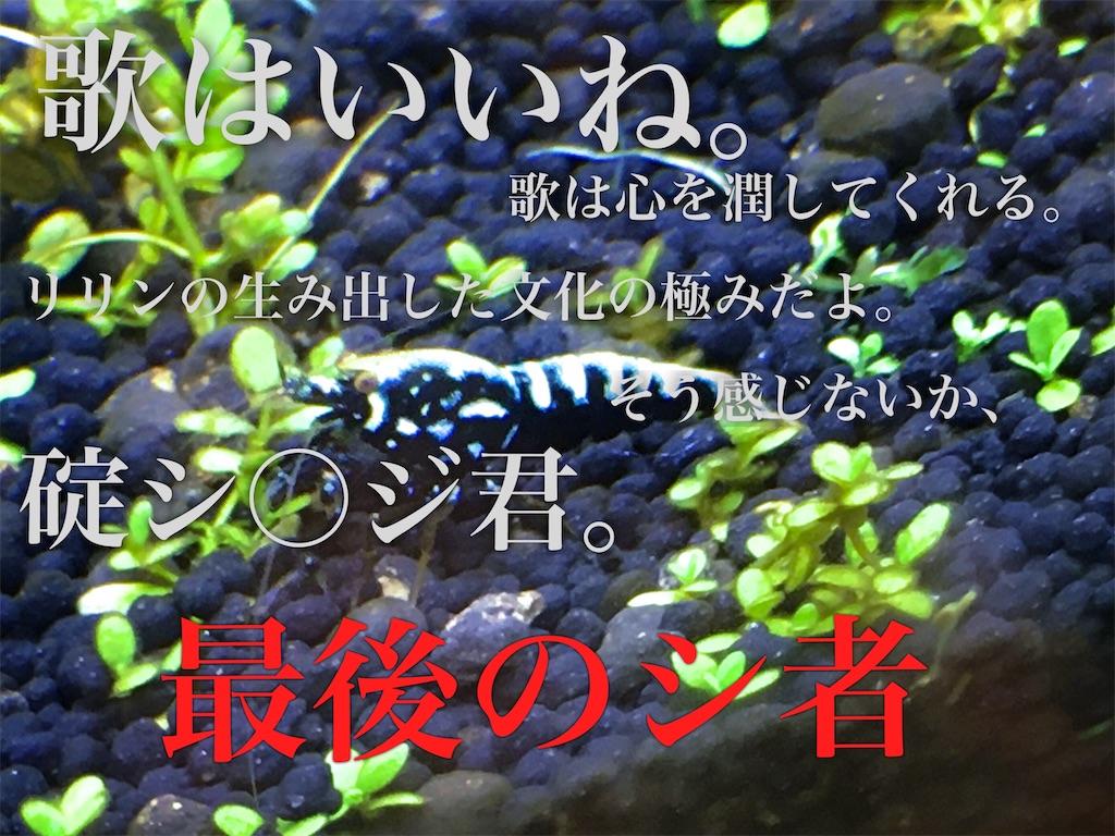 f:id:yumemiraitunagu:20200131194032j:plain