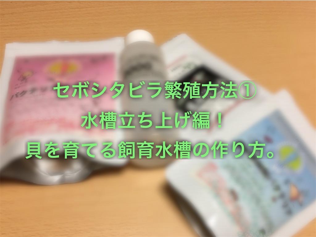 f:id:yumemiraitunagu:20200225024134j:plain