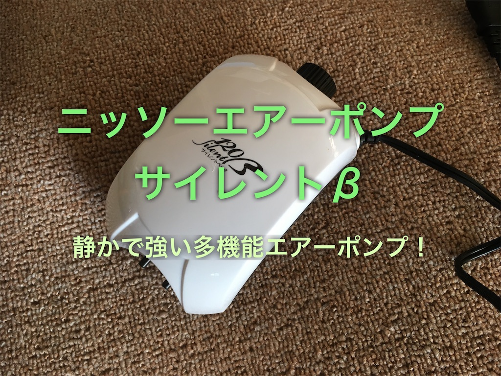 f:id:yumemiraitunagu:20200306174848j:plain