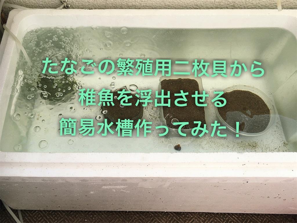 f:id:yumemiraitunagu:20200310140931j:plain