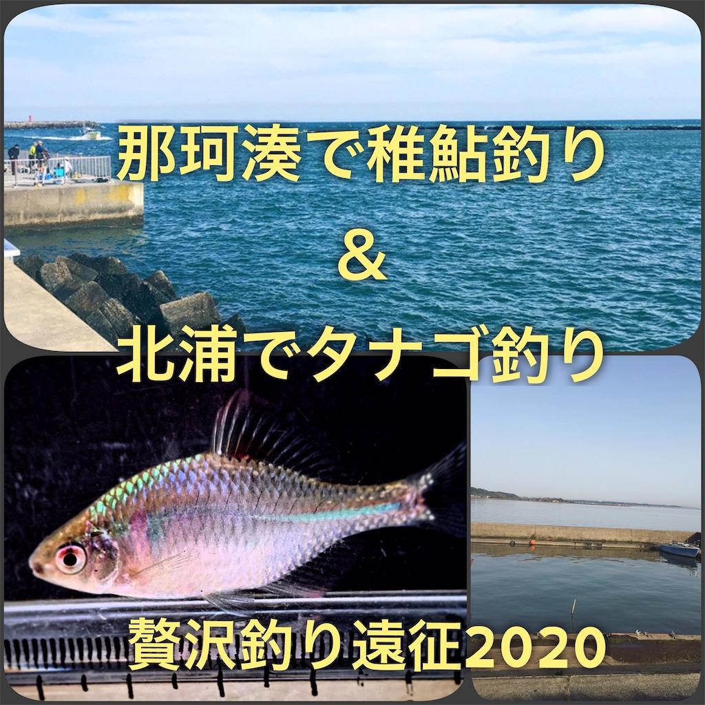 f:id:yumemiraitunagu:20200323054424j:plain