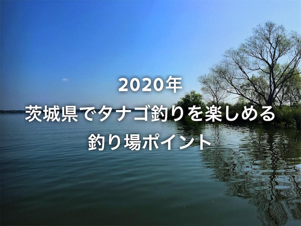 f:id:yumemiraitunagu:20200324124901j:plain