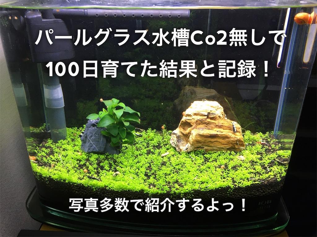 f:id:yumemiraitunagu:20200409052210j:plain