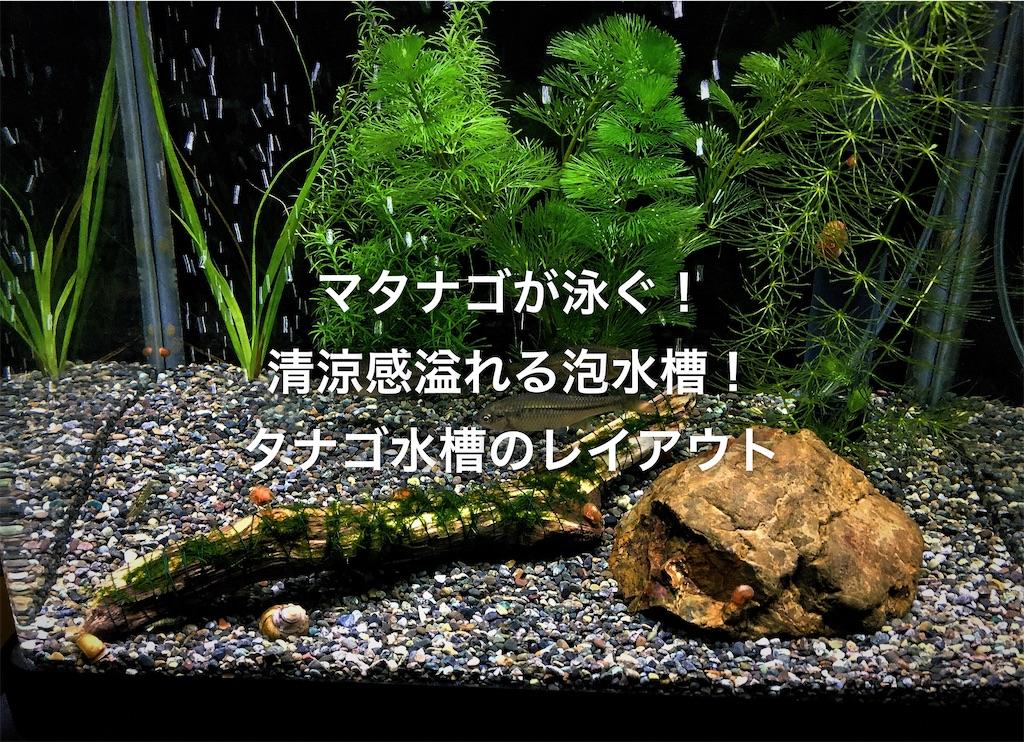 f:id:yumemiraitunagu:20200423190923j:plain