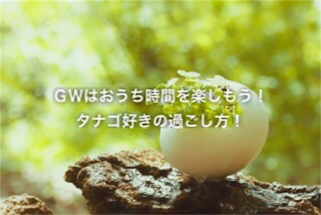 f:id:yumemiraitunagu:20200503031313j:plain