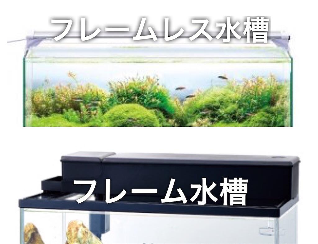 f:id:yumemiraitunagu:20200529012029j:image