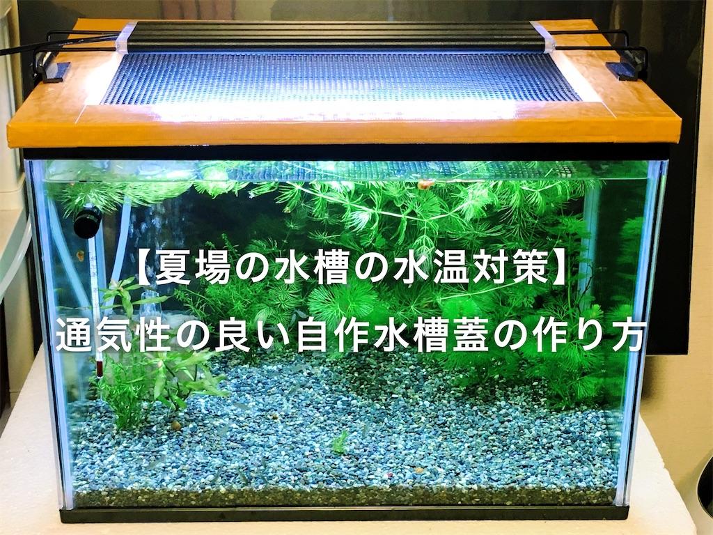 f:id:yumemiraitunagu:20200625111943j:plain